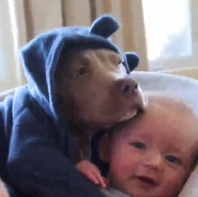 Cucciolo di bulldog col pigiama si dondola col neonato3