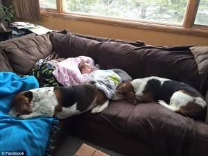 Nora, neonata colpita da ictus muore con suoi cani ai piedi 6