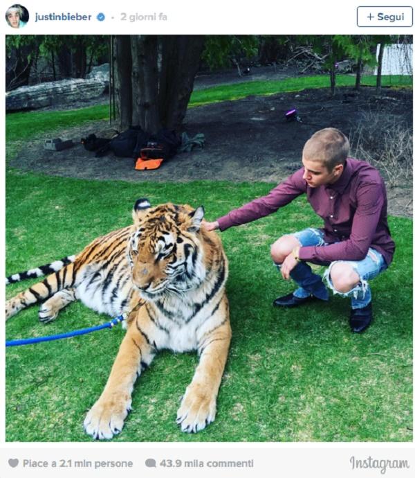"""Justin Bieber, foto scandalo: """"Strano che non sei morto"""""""