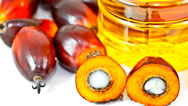 Olio di palma import export – Olio di palma: chi lo produce