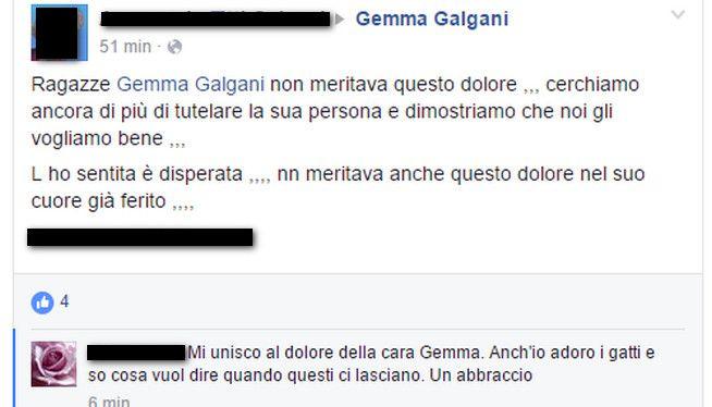 Gemma Galgani, gatto Piripicchio morto? Mistero su Facebook