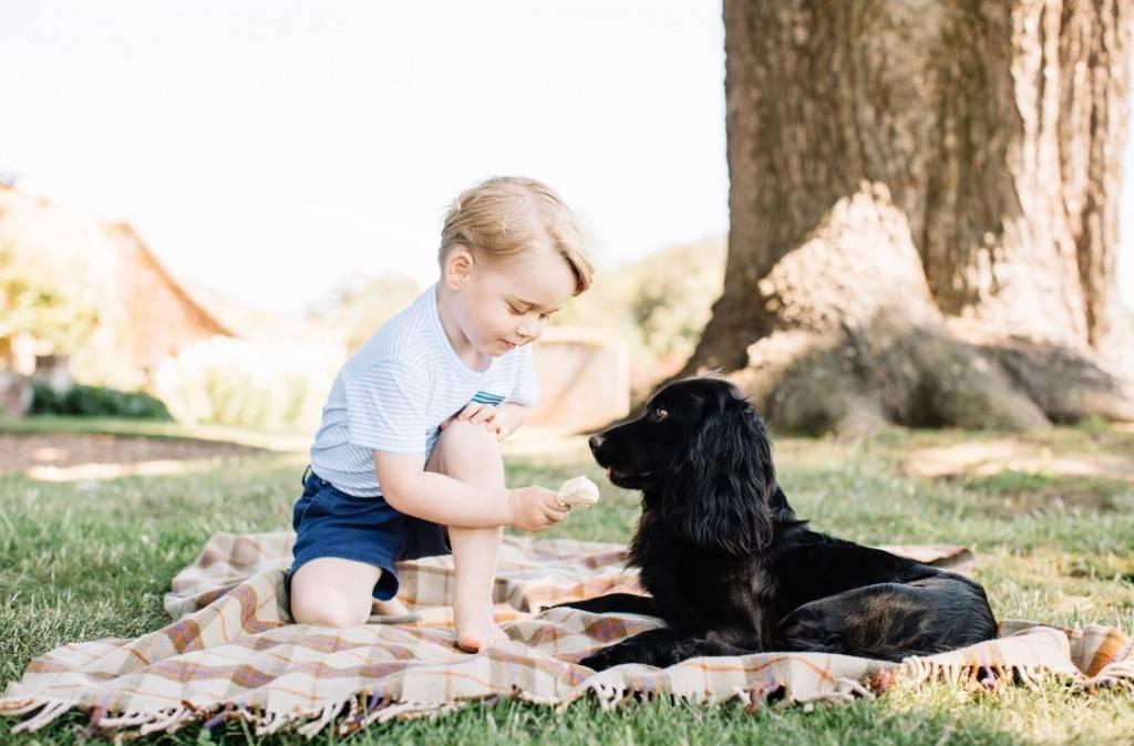 """Kate Middleton, parla William: """"George è viziato"""" FOTO"""