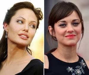 "Angelina Jolie e Brad Pitt, parla Marion Cotillard: ""Sono..."""
