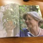 I DOLCI DELLA DOMENICA: dolci e tradizioni della penisola sorrentina