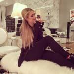 Paris Hilton, nuovo chihuahua indigna web5