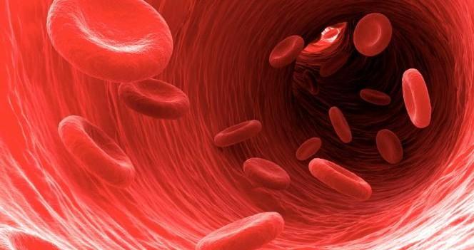 Colesterolo, 10 cose da sapere per proteggere il cuore