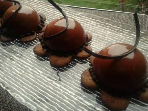 Semisfere alle castagne