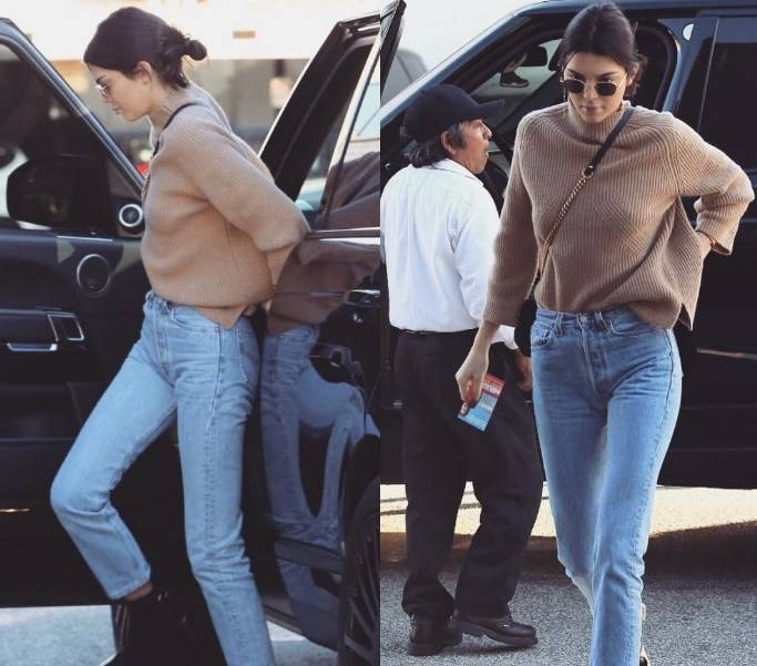 Kendall Jenner, look glamour con... un amico speciale FOTO