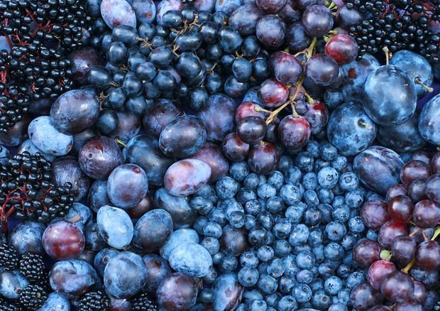Asma e psoriasi, in una molecola della frutta l'arma segreta