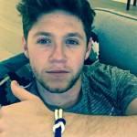 Harry Styles, Niall Horan
