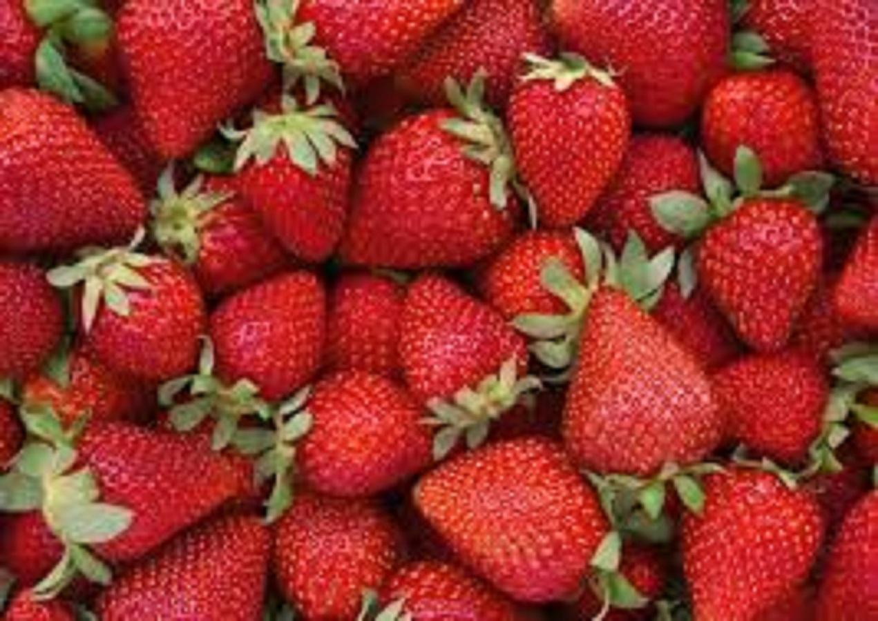 Pelle al top in quarantena: quale frutta e verdura mangiare