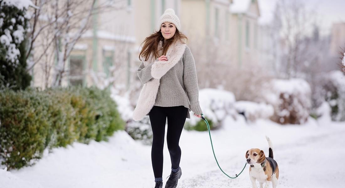 Ondata di freddo: 10 consigli per chi ha cani e gatti