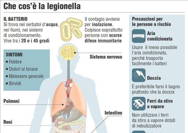 Cos'è la legionellosi: cause e rimedi dell'infezione portata dall'acqua