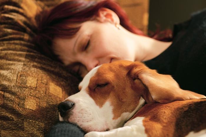 Sonno tranquillo: donne preferiscono cani al partner