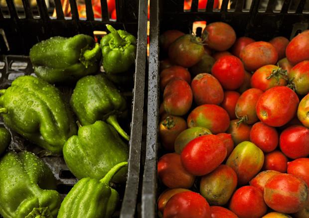 Mangiare solo bio fa crollare livelli pesticidi nell'organismo