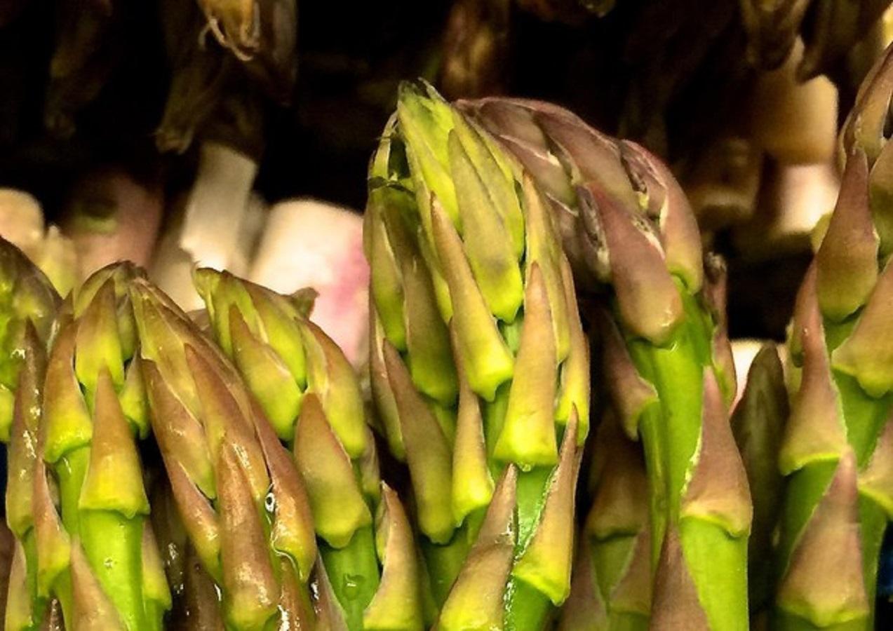 Asparagi, verdure di stagione contro colesterolo e trigligeridi