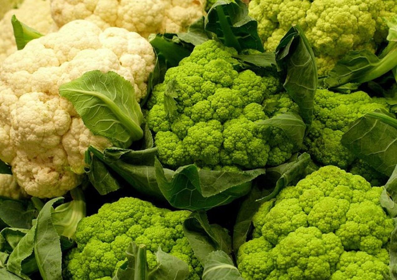 cibi-calorie-negative-broccoli