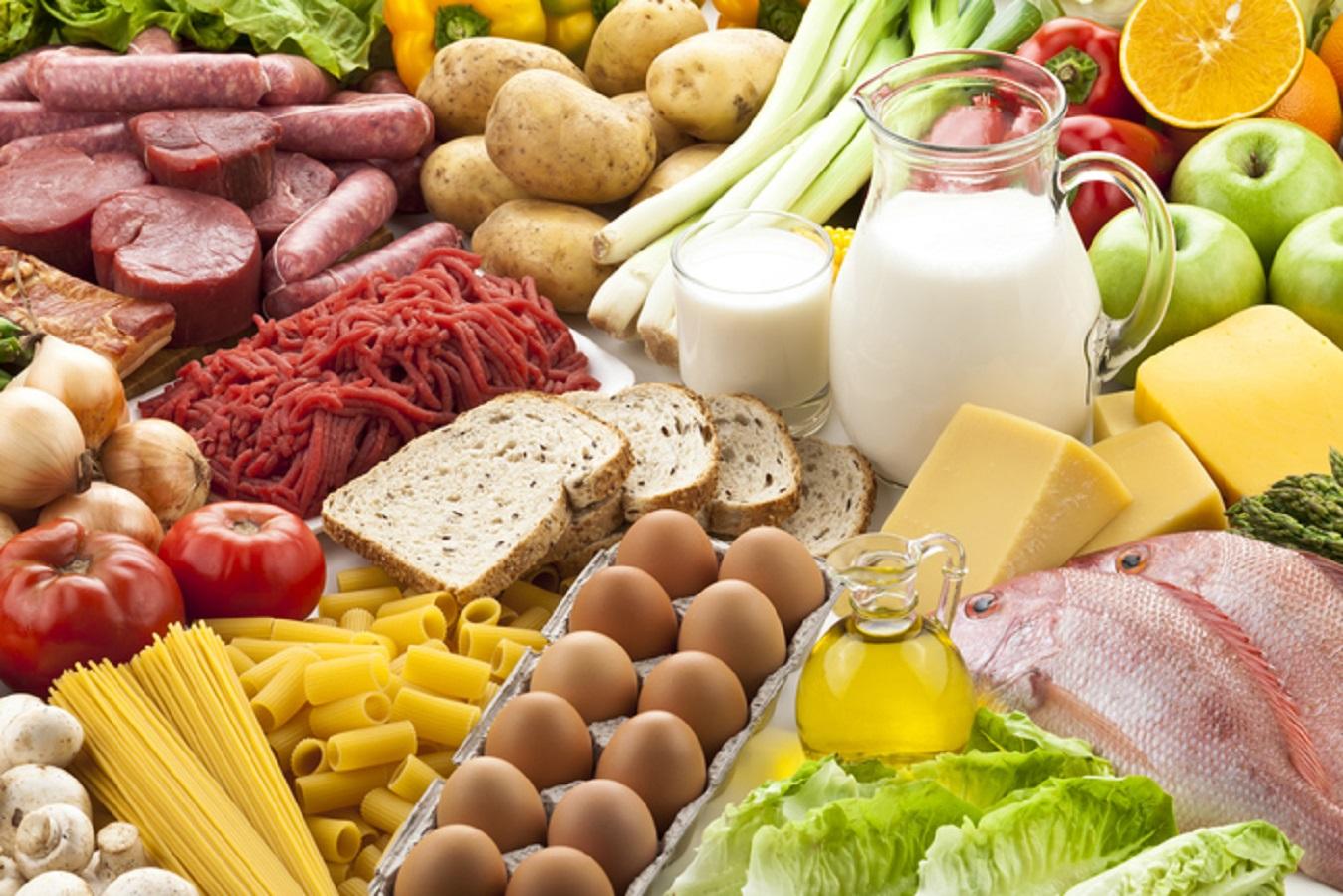 Dieta iperproteica e salute dei reni: cosa devi sapere