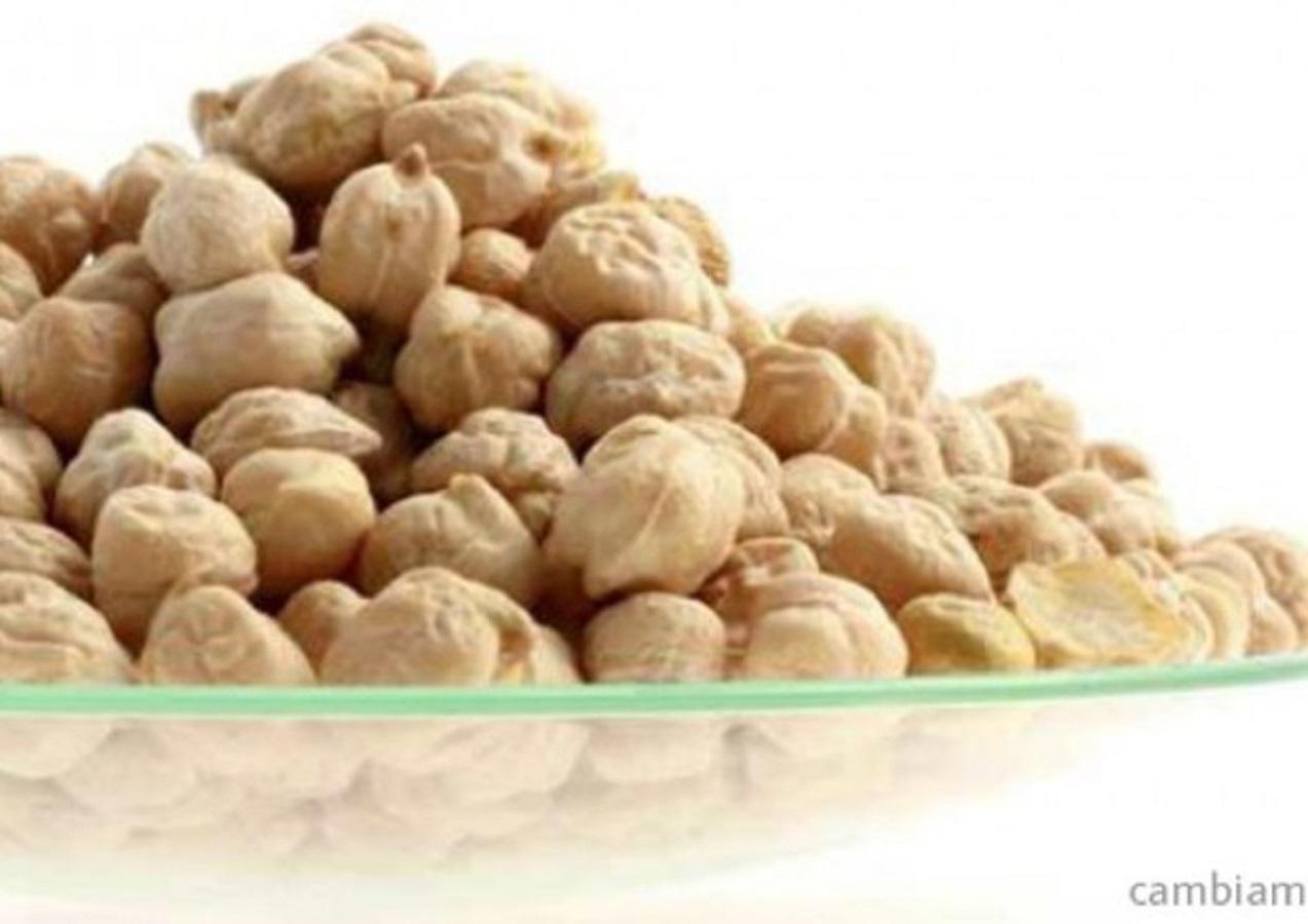 Alimenti fonte di fibre: 18 alleati per la dieta