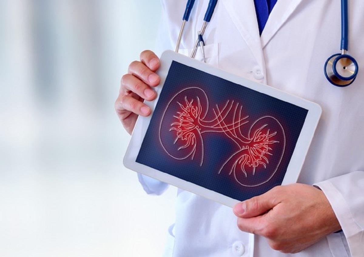 Malattie ai reni, l'azione quotidiana che ne diminuisce il rischio