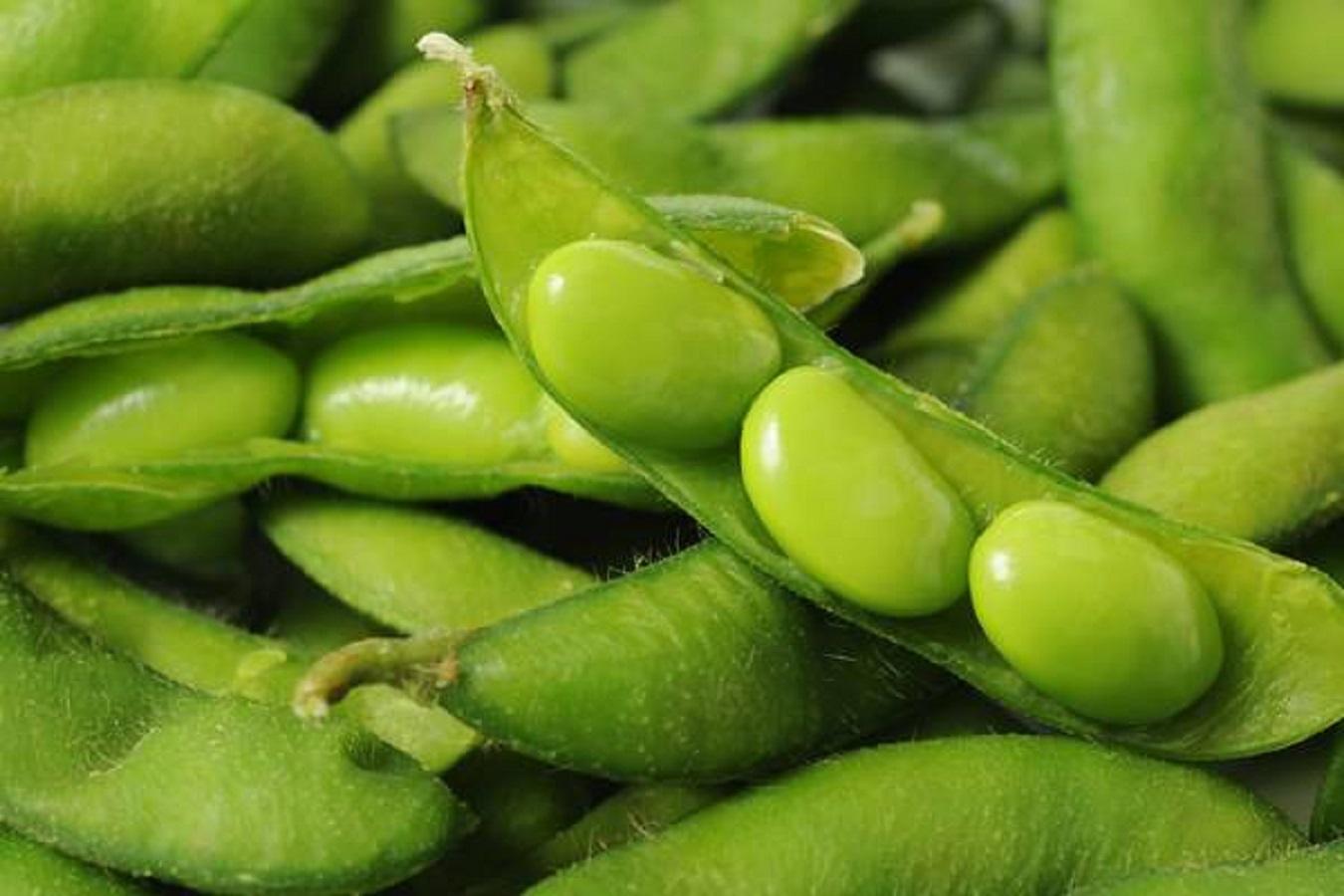 Dimagrire, 5 snack salutari alternativi per bruciare i grassi
