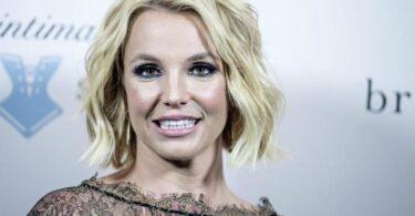 Britney Spears, chiamata al 911 per denunciare abusi prima dell'udienza