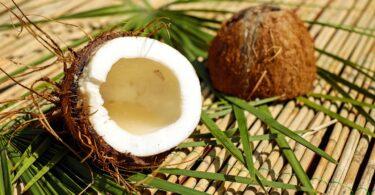 Acqua di cocco, 6 motivi per cui è la tua alleata in estate