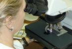una ricercatrice analizza al microscopio